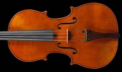 分辨小提琴面板