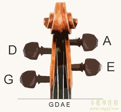 弦轴的位置