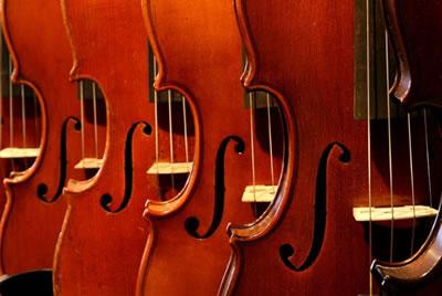 小提琴音孔样式
