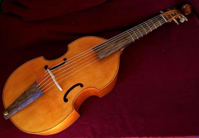 维奥尔琴的琴弦组成部分