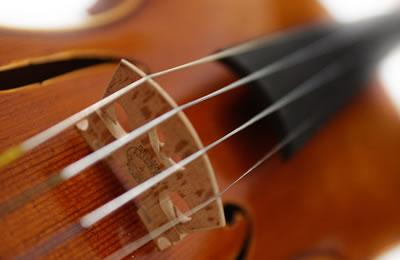 小提琴琴谱和琴弦图片
