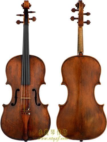 viola-pellegrino-di-zanetto-de-micheli-1
