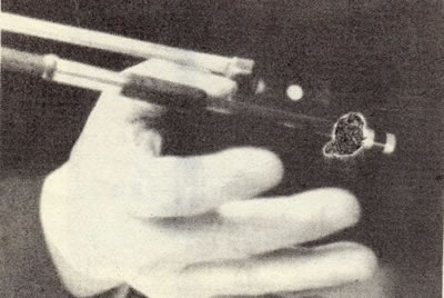 小提琴 wogong3