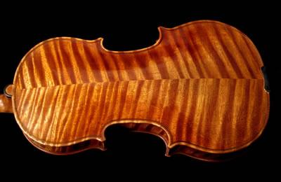 关于提琴材料方面的几点认识