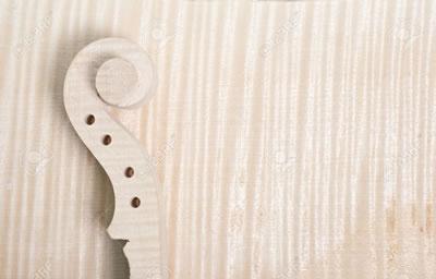提琴背板欧洲料与国产料的区别