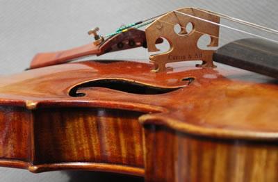 制作提琴会涉及到的科学知识