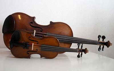 小提琴发出金属般音色木材是关键