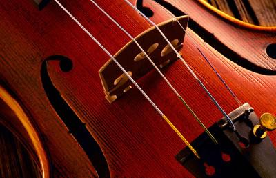 选购提琴-新琴不听音
