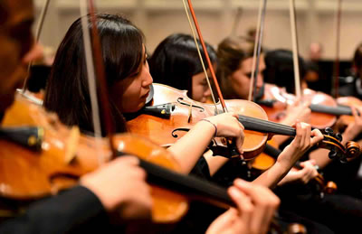 第一小提琴