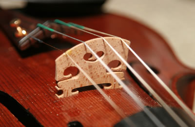 如何挑选小提琴琴码适合自己的琴用