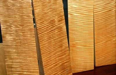 """用""""矿质化""""的木材制琴音色好"""