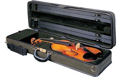 琴盒里的秘密