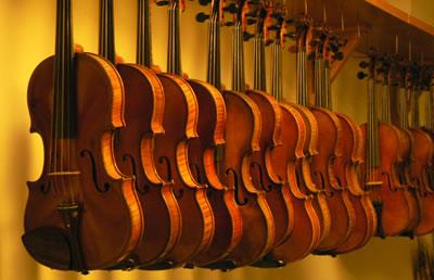 如打算选购买古提琴看看这篇文章