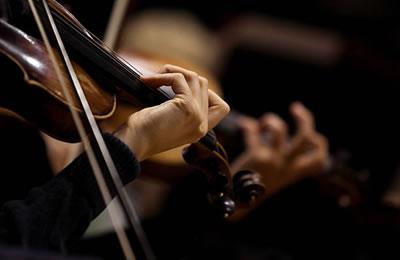 小提琴该如何揉弦看图解就明白了(动图)