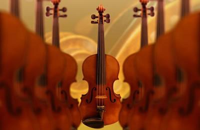 影响弦乐器(大小提琴)声音的原因