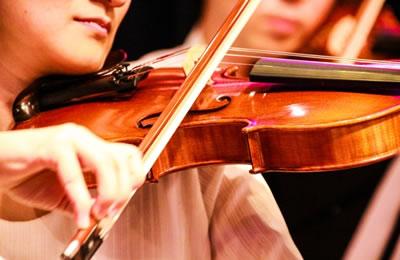 小提琴持琴与肩垫