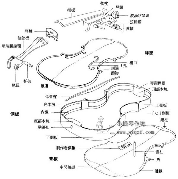 小提琴结构详细图